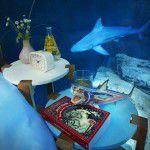 ужин с акулами