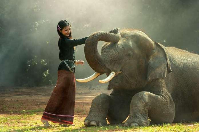 Таиланда, сельская местность