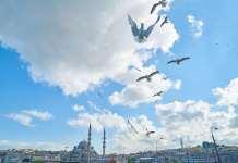 стамбул, мечети