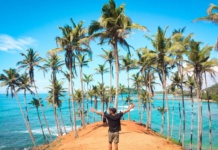Шри Ланка берег пальмы