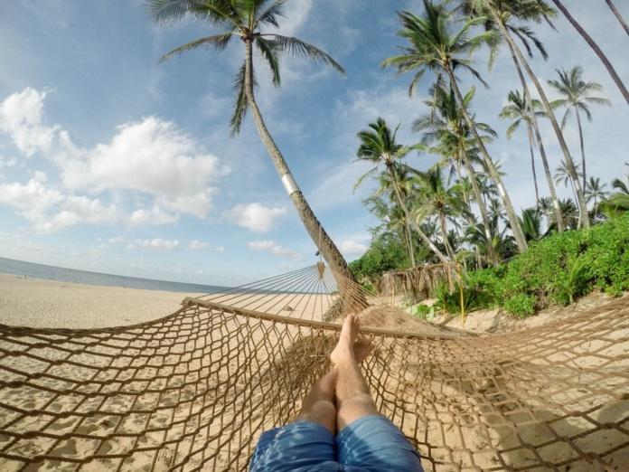 пляж пальмы гамак