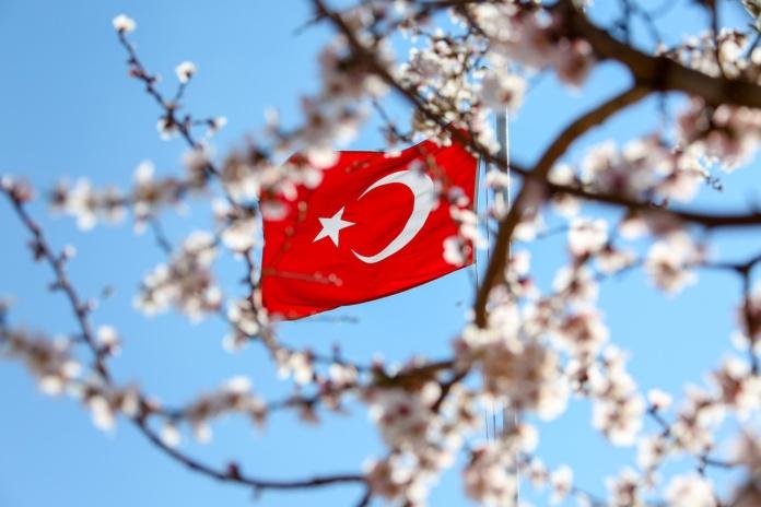 Турция флаг, цветущая ветка