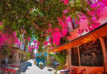 Турция, Бугенвилия, улица с цветами